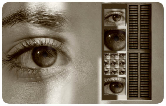 auge collage 564