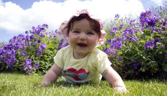 baby krabbeln gras 564