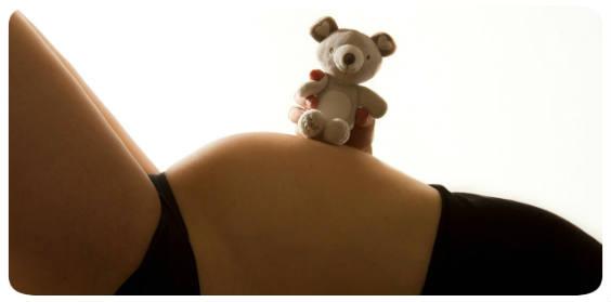 bauch teddy